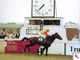 Mohair wins owned by the late Mrs Alice Wood